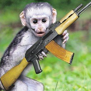 Shooting The Messenger: When Jihad Monkeys Attack!