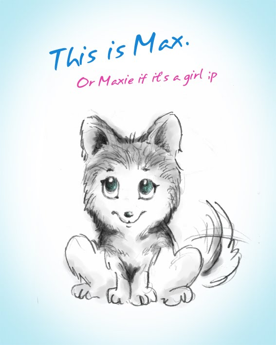 Go Back  gt  Gallery For  gt  Cute Animal Love DrawingsCute Husky Puppy Drawings