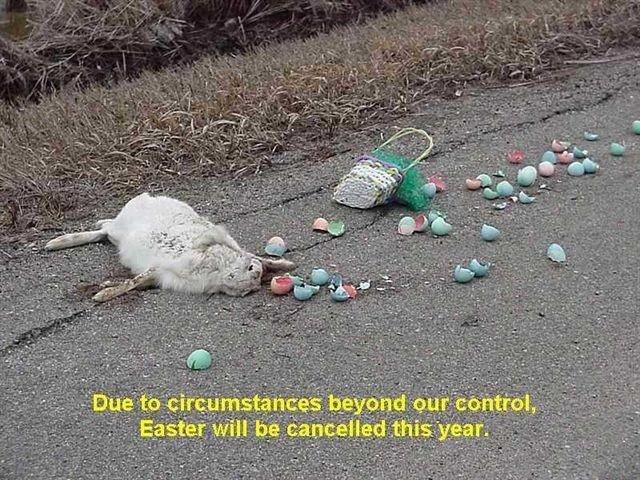 [Easter11(2).jpg]