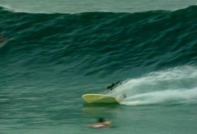 photo de surf 2364
