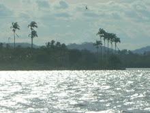 Baía de Todos os Santos e Engenho ao fundo - São Francisco do Conde - BA