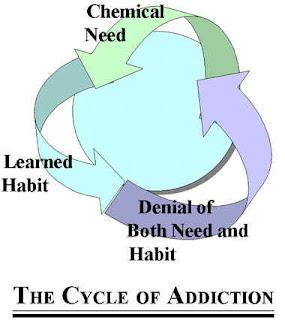 Characteristics of the addictive process young adult crisis hotline