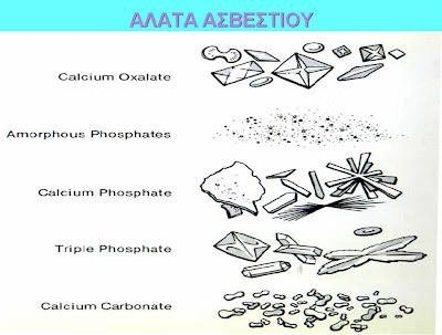 Image result for κρύσταλλοι οξαλικού ασβεστίου