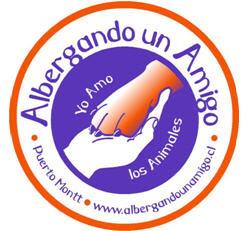 Protectora de Animales,   Puerto Montt - Chile