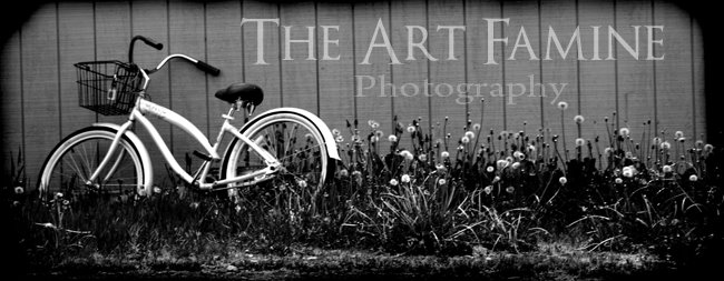 The Art Famine - Photography