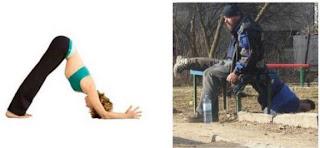 lura astor stretch imaginationbodybrainemotions yoga