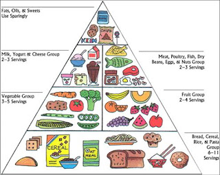 the importance of the food pyramid The food pyramid that represented a healthy abc news features lifestyle the plate makes it easier for people to understand the importance of eating healthier.