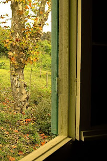 janela+outono.jpg