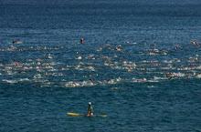 Honu 2008 swim start