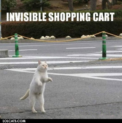 Daily Lolcat Invisible Lolcats