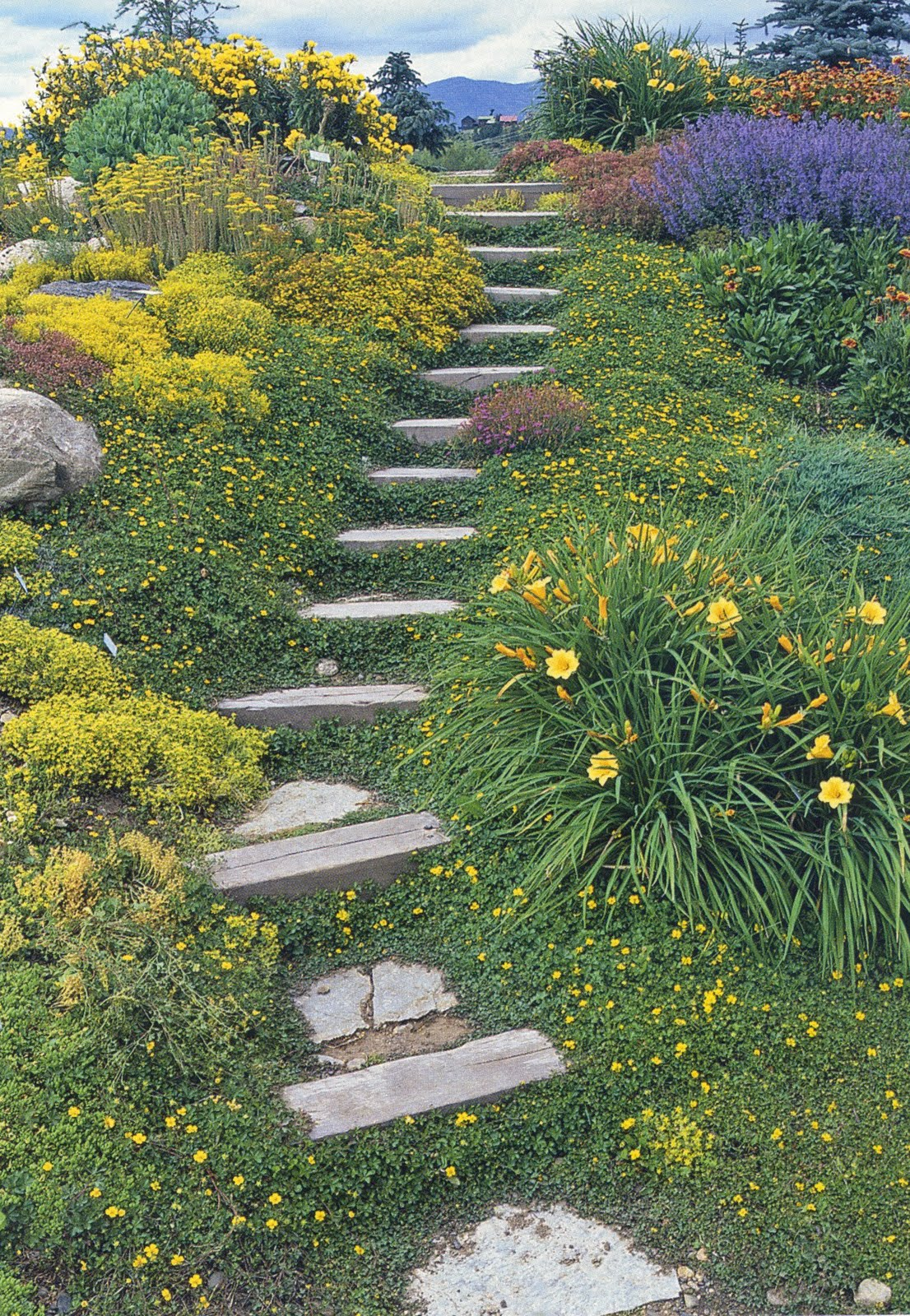 The Rusted Trowel: Landscaping Hillsides on Backyard Hill Landscaping Ideas  id=28849