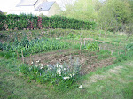 French Veg Garden