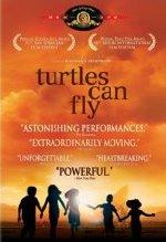[turtles-can-fly.jpg]