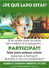 No a las Papeleras sobre el Río Uruguay