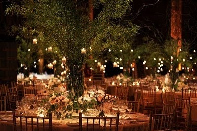 Fall String Lights Wallpaper Weddings S H A D E S O F W H I T E Garden Party