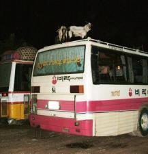 [bus2]