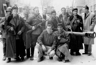 the hungarian revolution of 1956 essay