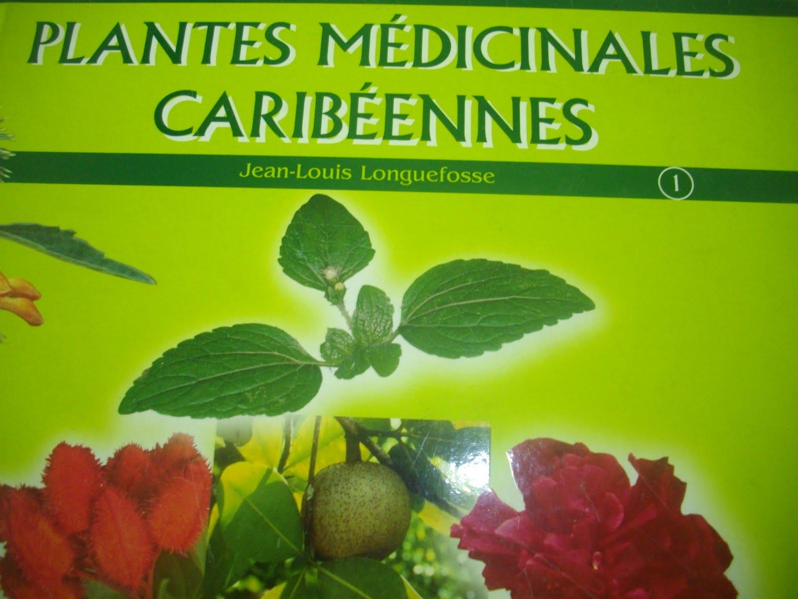 le jardin creole comment utiliser les plantes medicinales manni zot pe s vi se rimed razie a. Black Bedroom Furniture Sets. Home Design Ideas