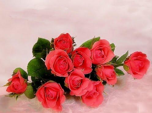 Merci S Blog Muttertagsgedichte