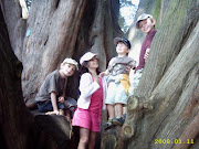 Four Kiwi Grandkids In A Tree