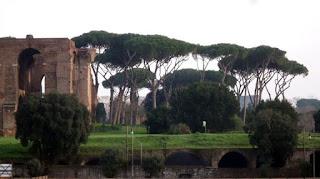 O Palatino, pode-se entrar com o Roma Pass