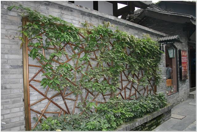 Southeast Florida Garden Evolvement: China Trip Part 3: A