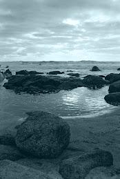 : : Playa del Quisco