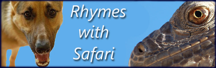 Rhymes with Safari