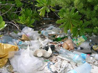 rifiuti sull'isola