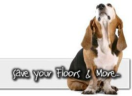 Floors kitchen design notes for Hardwood floors dog nails