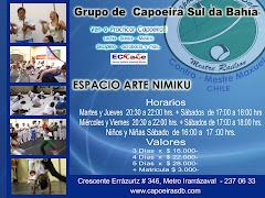 CLASES CAPOEIRA INCIANTES AVANZADOS NIÑOS (AS)