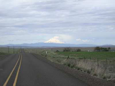 Riding west from Grass Valley looking at Mt. Adams