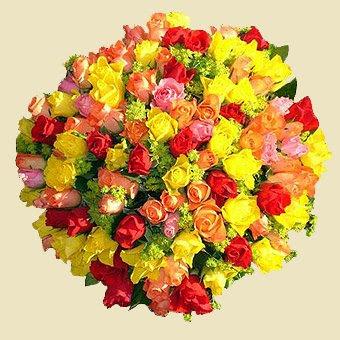100 trandafiri
