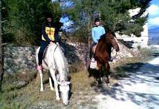 Más info Alicante vendo caballo.