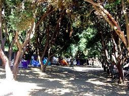 Parque de Campismo do Carapacho - Freguesia da Luz