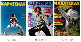 Journal Karatékas
