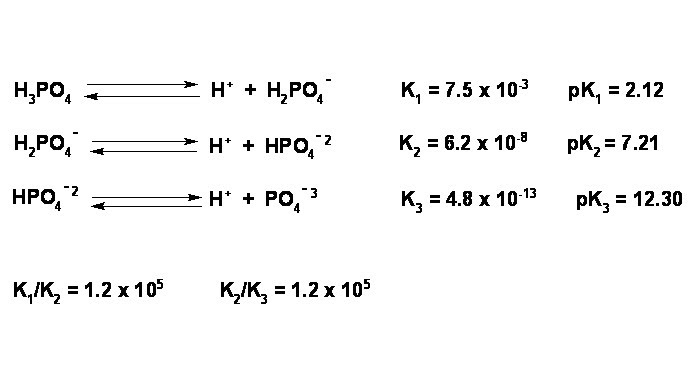 General Chemistry Lab: Neutralization of a polyprotic acid