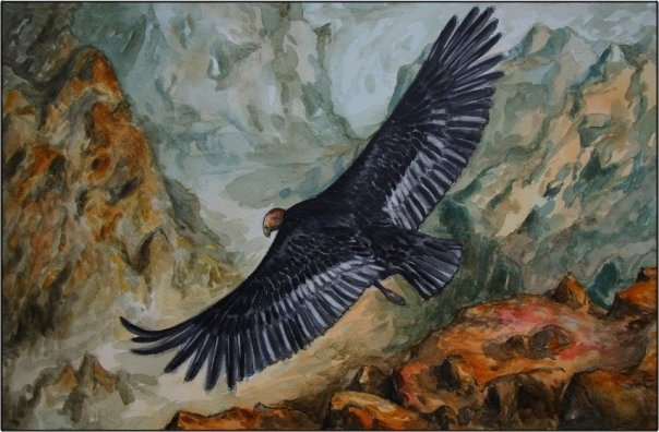 White Wolf : The Inca Prophecy : Eagle and Condor (Video)
