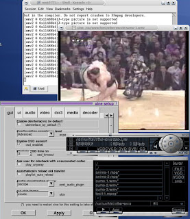 XINE media player