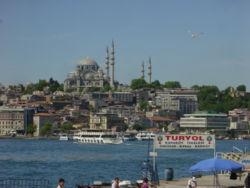 [250px-Istanbul_-_Süleymaniye_camii_dal_suleymaniye.jpg]
