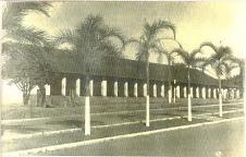 Colégio José F. Ferreira ainda na Câmara.