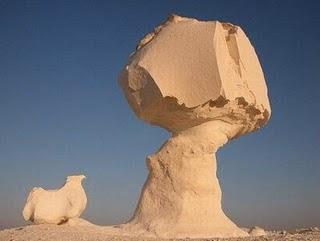 Hongos de Piedra