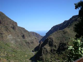 Guayadequedalen på Gran Canaria