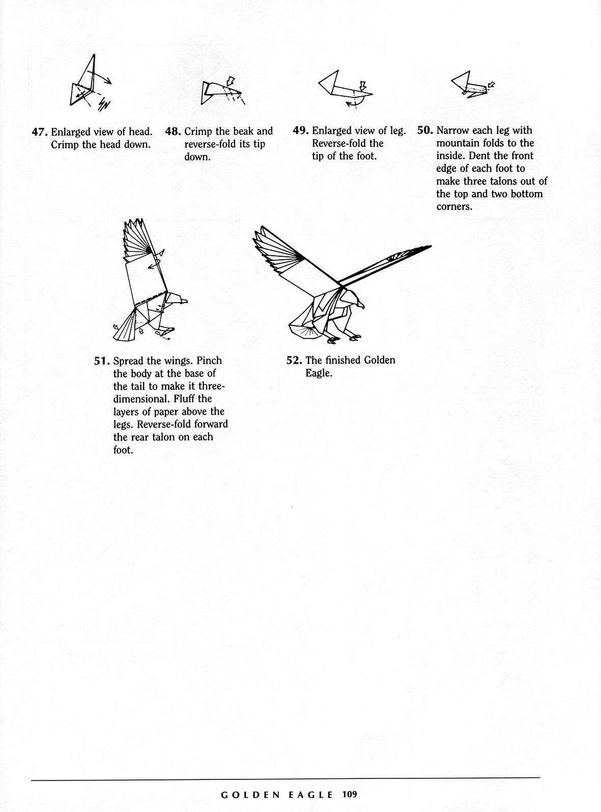 Origami Eagle Instructions Diagram How Do You Make A Contoh Brosur Obat Herbal Downlllll