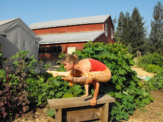 marlie yoga in garden