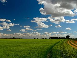 Un barredor de tristezas, Un aguacero en venganza Que cuando escampe parezca Nuestra esperanza  (Rabo de nube.Silvio Rodriguez)