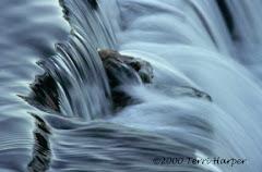 """""""Dancing Water"""""""