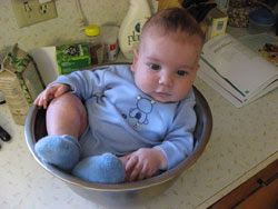 Grandbaby in a Bowl