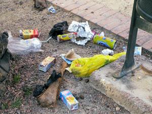 La basura está presente por todo el parque
