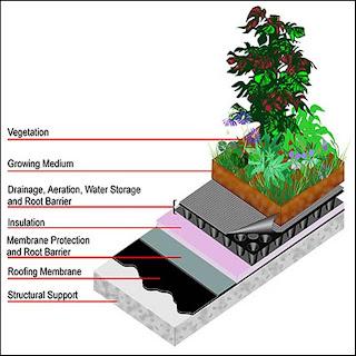 Landarchy Malaysia Roof Garden System